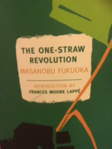 one-straw-rev-book-cover